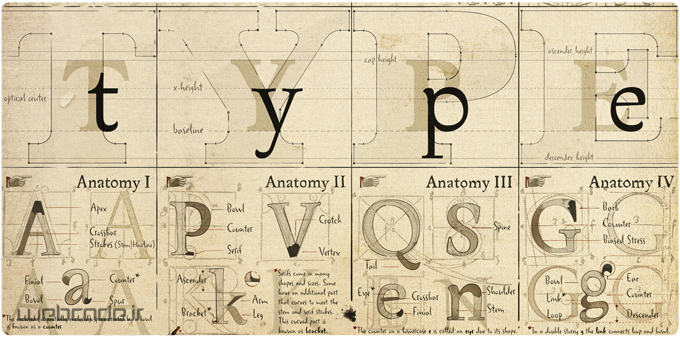 تایپوگرافی چیست